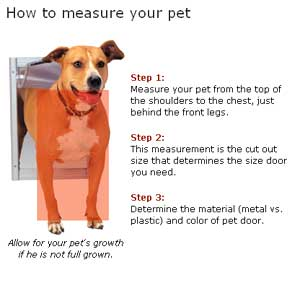 A quick guide on how to measure your pet for a new pet door.