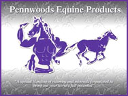 PENNWOODS EQUINE PRODUCTS Essential E Vitamin E Supplement For Horses  32 OUNCE
