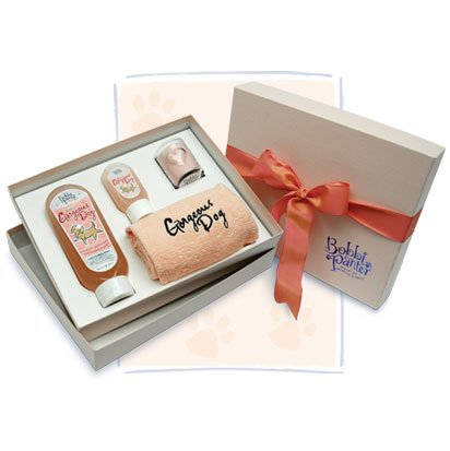 Gorgeous Dog Gift Box Best Price