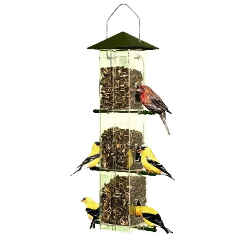 Evenseed Silo Bird Feeder Best Price