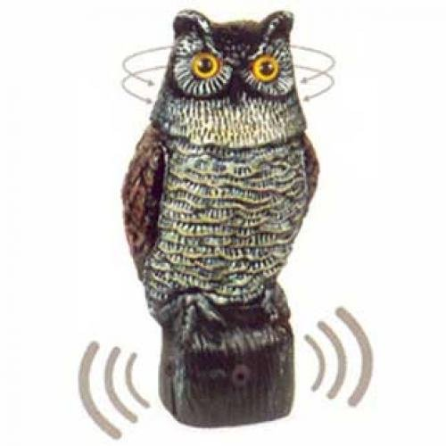 Electronic Garden Owl Pest Deterrent Best Price