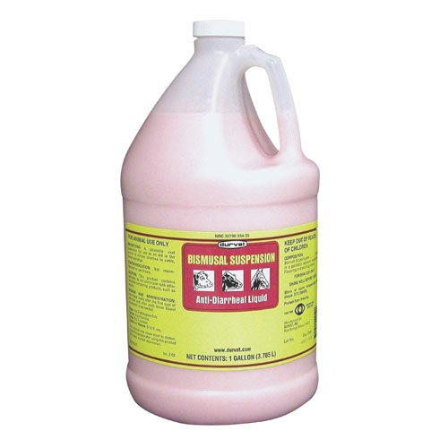 Bismusal Anti-Diarrheal Liquid - 1 gal Best Price