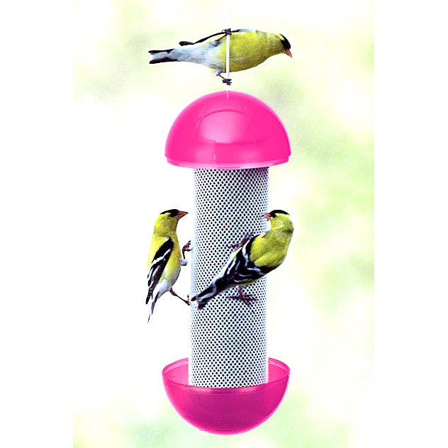Have-a-Ball Finch Feeder Best Price