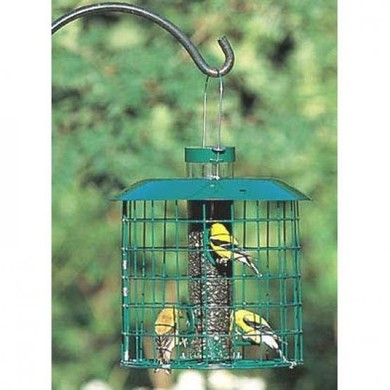 Accent Selective Squirrel Proof Bird Feeder Best Price