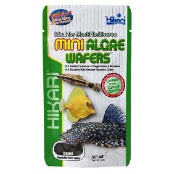 Mini Algae Wafers Fish Food 3 Oz.