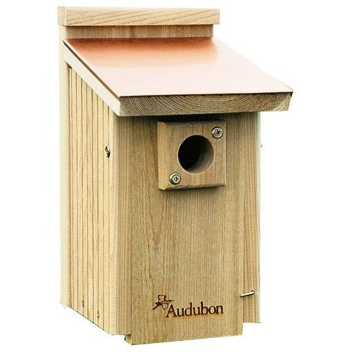 Coppertop Bluebird House 7 25 X 9 X 13 5 In Wild Bird