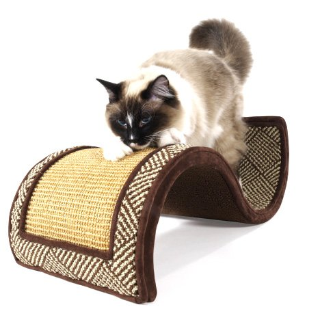 Dream Curl Cat Scratcher Best Price