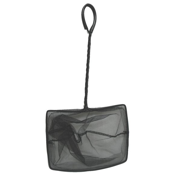 Laguna Fish Net for Ponds - 8  X 6 Best Price
