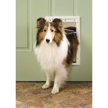 Premium Plastic Pet Door by Petsafe / White / Size (Small) Best Price