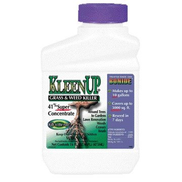 Kleenup 41% Concentrate - 1 pint Best Price