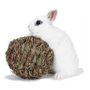 Rabbit Woven Grass Play Ball