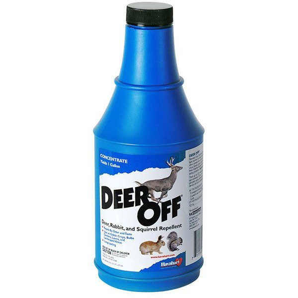 Deer-Off Concentrate / Size (16 ounces) Best Price