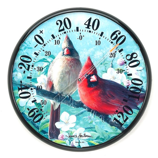 Decorative Cardinal Thermometer 12.5 in. Best Price