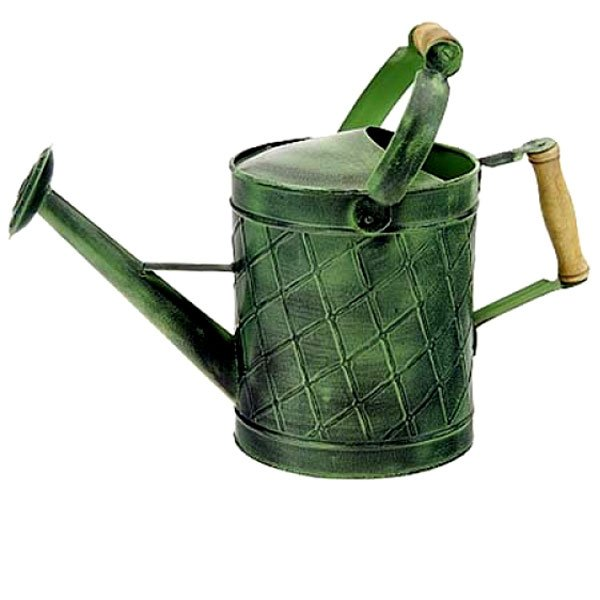 Green Patina Watering Can - 1gal Best Price