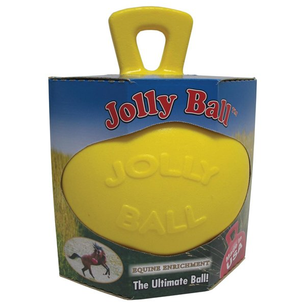 Scented Jolly Ball - 10 inches / Scent (Banana) Best Price