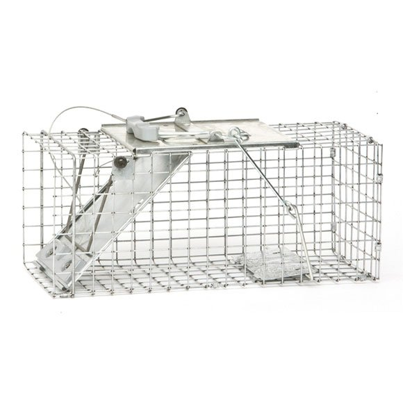 Havahart Easy Set Small Rabbit  Skunk and Squirrel Trap Best Price