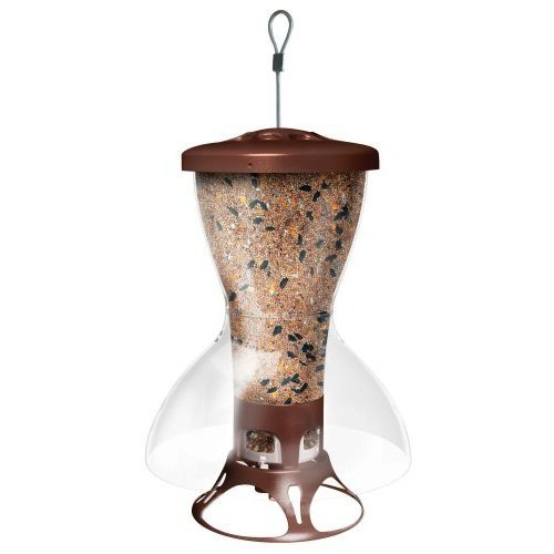 Bird Shelter Squirrel Proof Bird Feeder Best Price