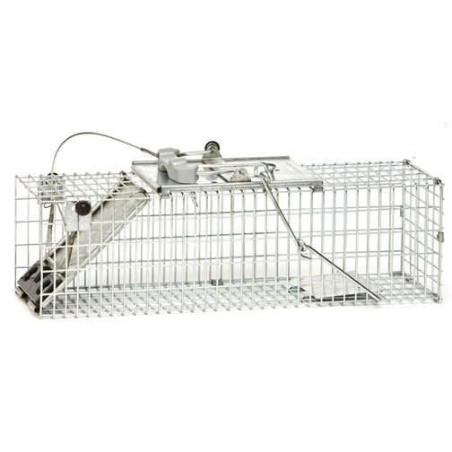 Easy Set Cage Trap - 18x5x5 in. Best Price