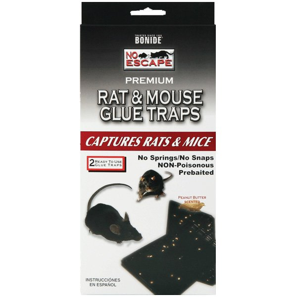 Rat and Mouse Glue Trap (Case of 12) Best Price