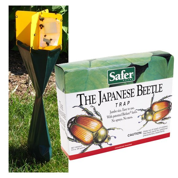 Japanese Beetle Trap - Safer Brand  (Case of 12) Best Price