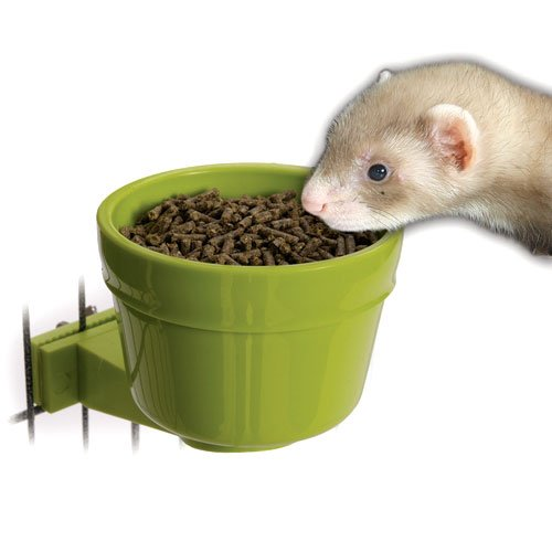 Easy-on Crock for Ferret/Rabbit Cages Best Price