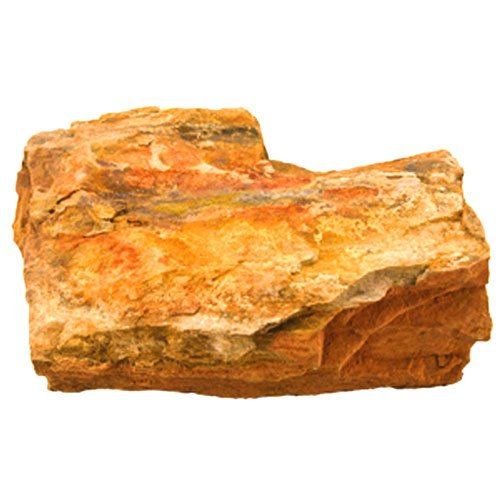 Petrified Wood for Aquariums - 25 lbs Best Price