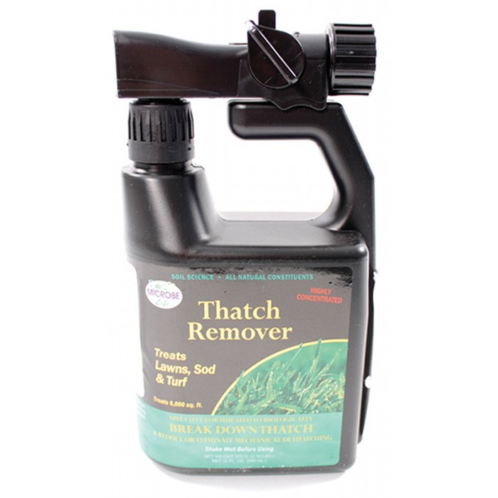 Dead Grass and Thatch Remover - 32 oz. Best Price