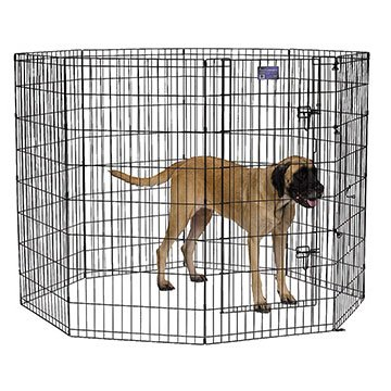 Dog Exercise Pen with Door / Size (48 in.) Best Price