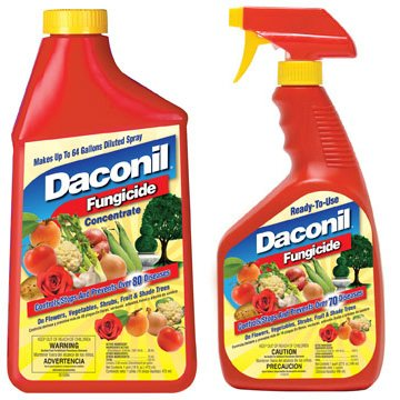 Daconil Fungicide Best Price