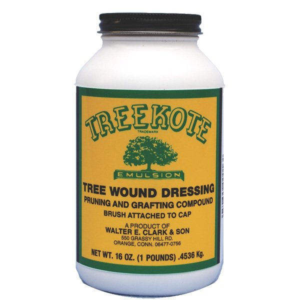 Treekote Brushtop Tree Wound Dressing  / Size (16 oz.) Best Price
