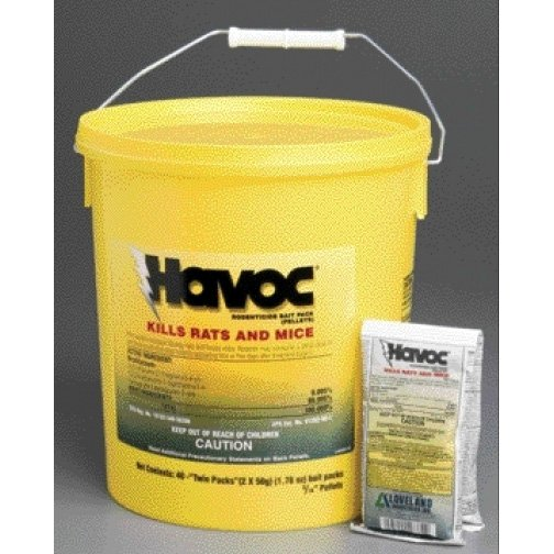 Havoc Twin Packs Pail - 50 GRAM Best Price