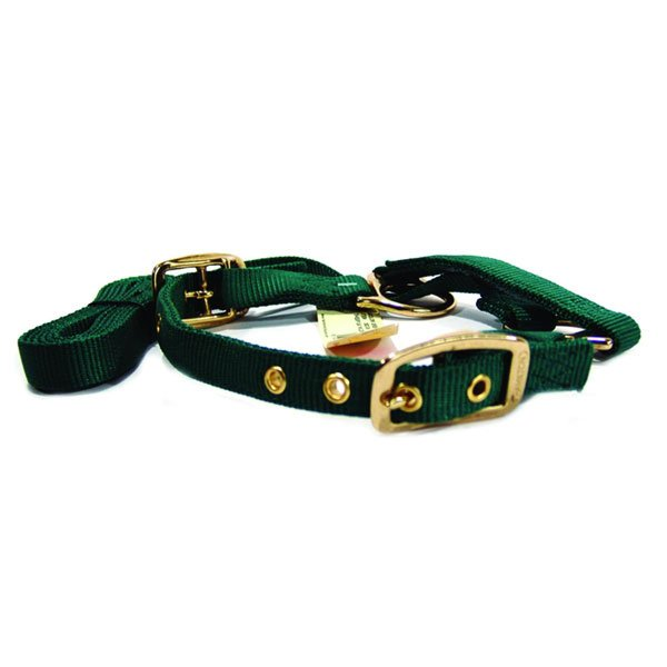 Adjustable Sheep Show Halter - Green Best Price