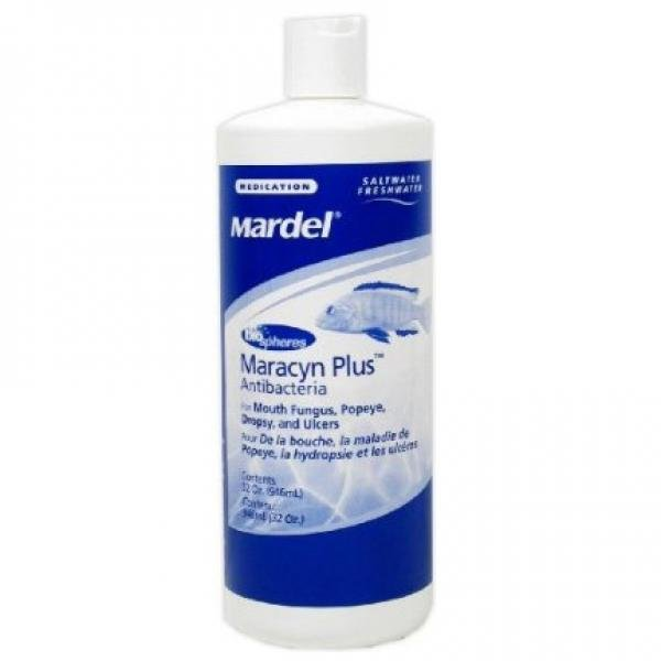 Maracyn Plus With Biospheres 32 oz. Best Price