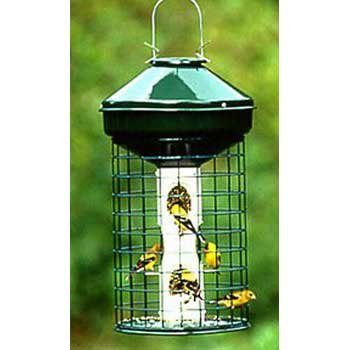 Avian One Metal Caged Sunflower and Mixed Seed Bird Feeder Best Price