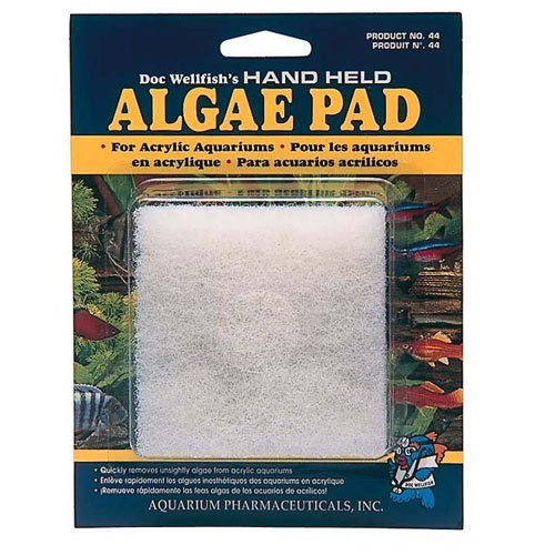 Algae Hand Pad For Acrylic Best Price