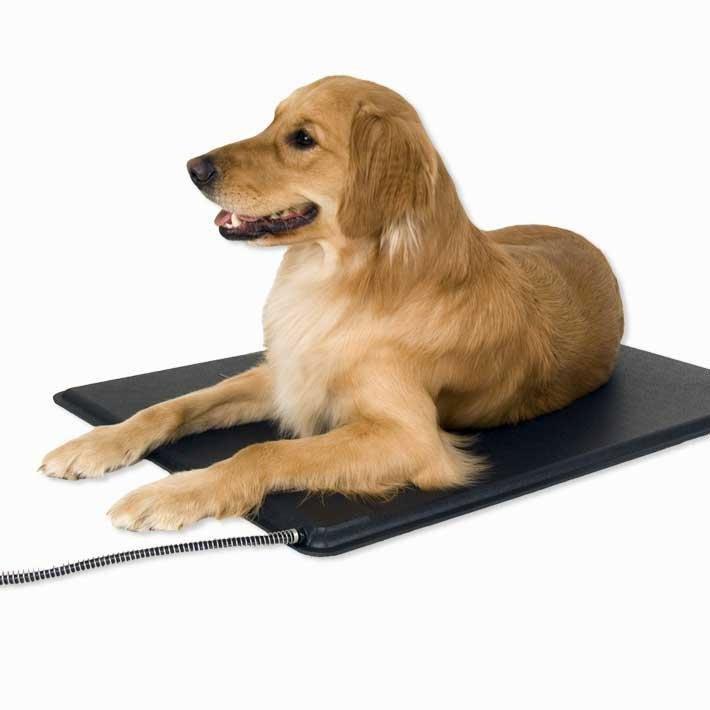 Lectro Kennel Heated Pet Mat / Size Medium Mat