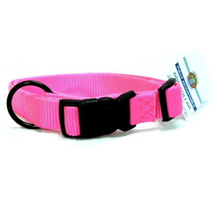 Adjustable 1 in. Dog Collar (18-26 in) / Color (Hot Pink) Best Price