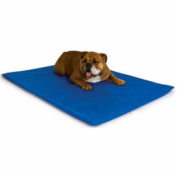 Cool Bed III - Dog Water Bed / Type (Large/Blue)