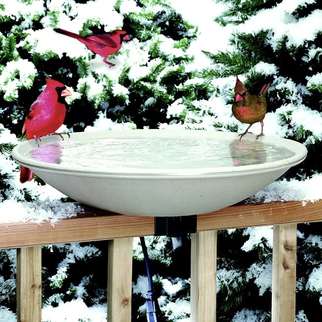 Heated Bird Bath Easy Tilt To Clean