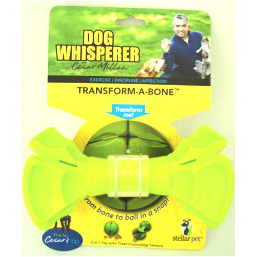 Transform A Bone Dog Toy