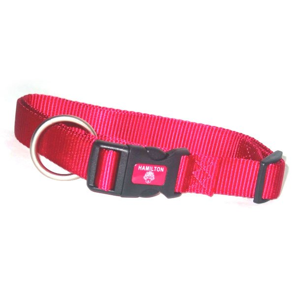 Adjustable Dog Collar / Size Raspberry 3/4 In. / 16 22 In.