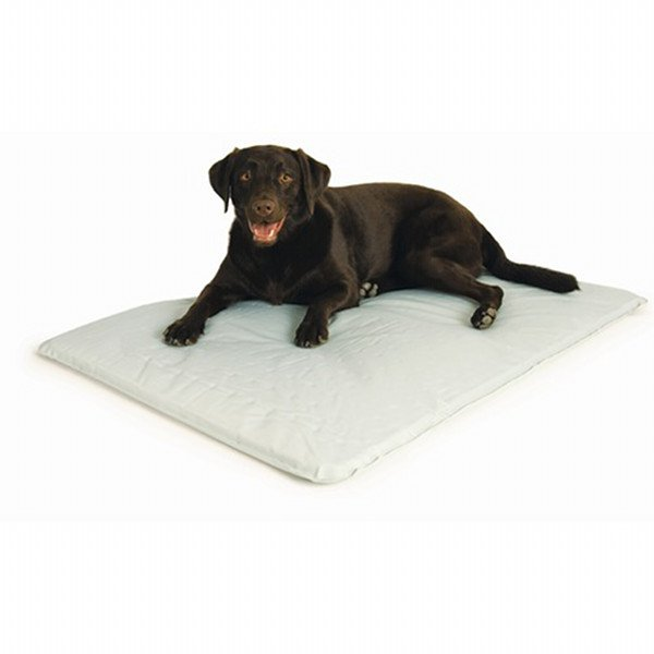 Cool Bed Iii Dog Water Bed / Type Large/grey