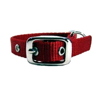 Nylon Dog Collar W/ Tongue Buckle / Size 5/8 X 14 In. / Red