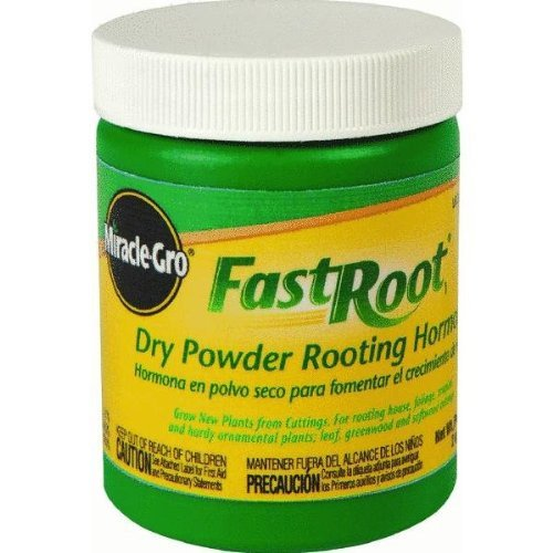 Miracle Gro Fast Root 1.25 oz ea. (Case of 12) Best Price