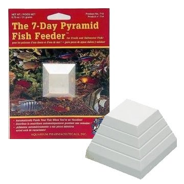 7-Day Fish Feeder Pyramid - 1 pk. Best Price