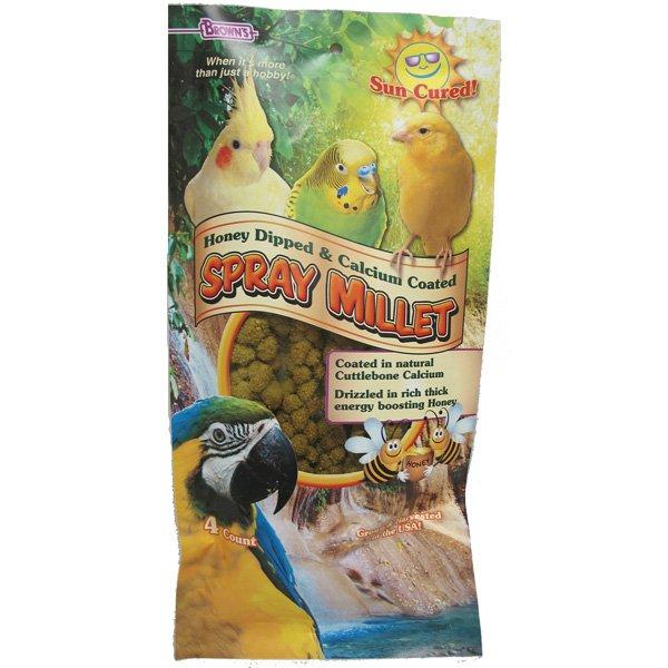 Extreme Honey/Calcium Spray Millet Orange 4 oz. Best Price