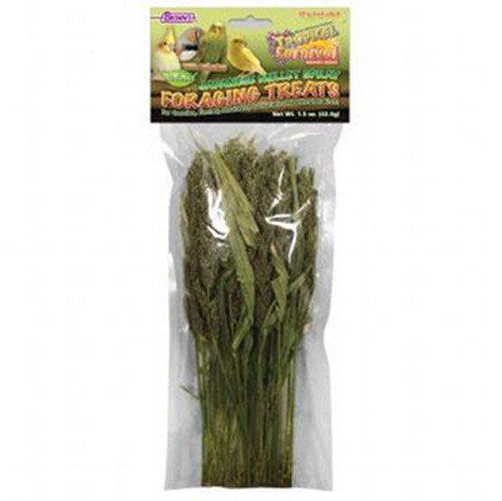 Tropical Carnival Japanese Millet Foraging Bird Treats - 1.5 oz. Best Price