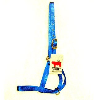Bull Turn Out Halter - 1 in. Best Price
