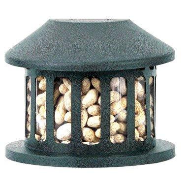 Squirrel Diner II Feeder - Medium Best Price