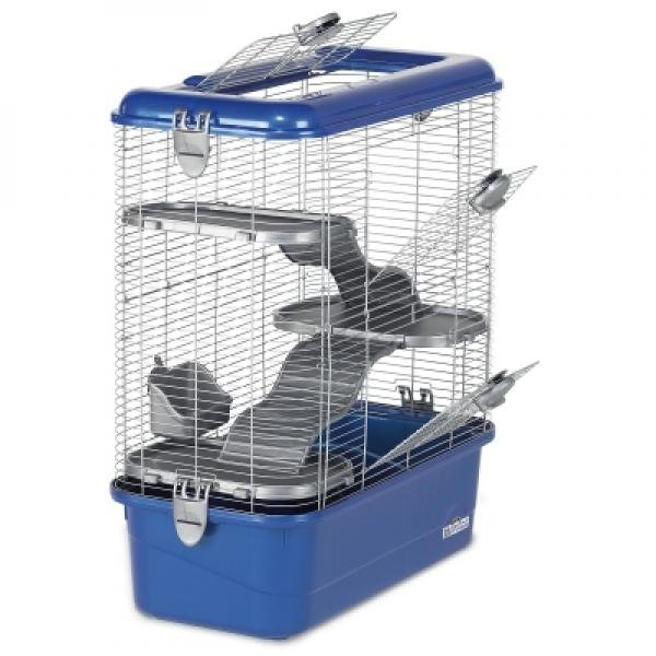 Habitat Defined Home For Rats Medium